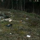 skirgiskes-darom-2012-13