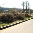 skirgiskes-darom-2012-31